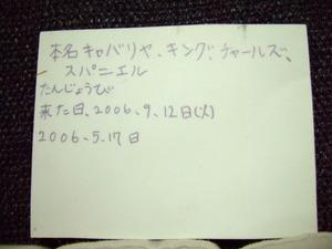 2006_1213_173016